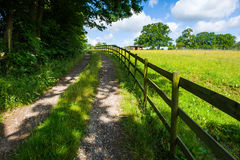 Countryside road Stock Images