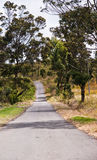 Countryside road track Royalty Free Stock Photography