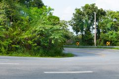 Countryside road with trees on both sides. Curve of the road to mountain royalty free stock images