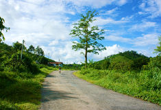 Countryside road under blue sky Royalty Free Stock Photography