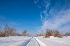 Countryside road through winter field with forest on a horizon. Royalty Free Stock Photos