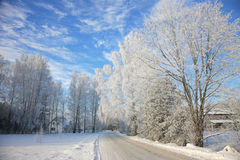 Countryside road in winter Stock Image