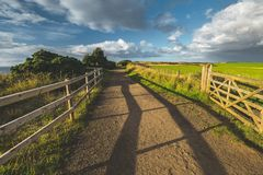 Countryside road with wooden fence. Ireland. Countryside road with wooden fence. Northern Ireland landscape. The country driveway passing through the green royalty free stock images