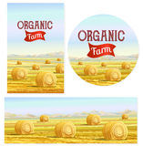 Countryside landscape vector illustration with haystacks on fields. Rural area landscape countryside house. Stock Photo