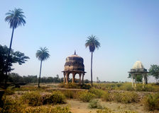 Countryside rural tropical landscape, india. Countryside tropical landscape in rural India with long date palm trees and very old architecture and its domes Royalty Free Stock Images