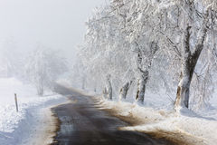 Countryside rural winter road going in to the fog Royalty Free Stock Image