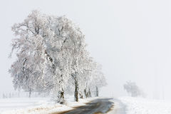Countryside rural winter road going in to the fog Royalty Free Stock Images