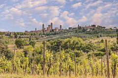 Countryside in San Gimignano, Tuscany, Italy. Landscape of the hills of tuscany with vineyard for production Chianti italian wine with the medieval town San Royalty Free Stock Photos