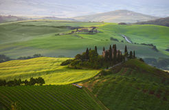 Countryside, San Quirico d`Orcia , Tuscany, Royalty Free Stock Image