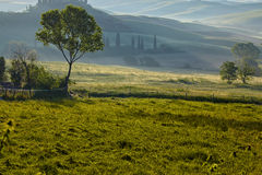 Countryside, San Quirico d`Orcia , Tuscany, Royalty Free Stock Photos
