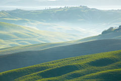 Countryside, San Quirico d´Orcia, Tuscany,. Italy Royalty Free Stock Images