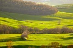 Countryside, San Quirico d´Orcia, Tuscany,. Italy Stock Photo
