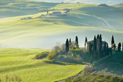 Countryside, San Quirico d´Orcia, Tuscany, Stock Photography