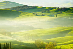 Countryside, San Quirico d´Orcia, Tuscany,. Italy Stock Images
