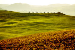 Countryside, San Quirico´Orcia , Tuscany, Stock Images