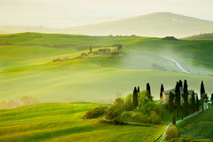 Countryside, San Quirico´Orcia , Tuscany, Stock Photos