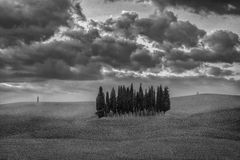 Countryside San Quirico  Orcia Tuscany, Italy Royalty Free Stock Images