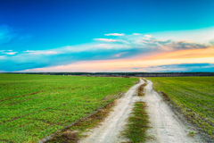 Countryside sandy road in green field. Spring season. Meadow and Royalty Free Stock Photos