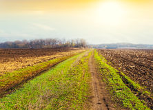 Countryside scene at the sunset Royalty Free Stock Photos