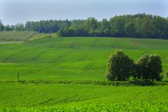 Countryside scenery. Royalty Free Stock Photography