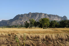 Countryside scenery. The mountain in the countryside of Thailand Royalty Free Stock Image