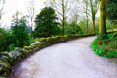 Countryside scenery forest walking way stock photos