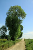 Countryside scenery in northern China Royalty Free Stock Photography