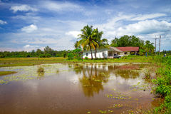 Countryside scenery in Thailand stock photo