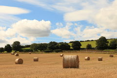 Countryside (Scotland, UK) Royalty Free Stock Photography