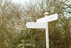 Countryside signpost Blank. In front of trees Stock Photos