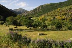Countryside, Spain stock photo