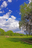 Countryside in the spring,  Ukraine Royalty Free Stock Photo