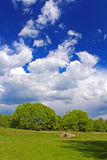 Countryside in the spring,  Ukraine Royalty Free Stock Photography