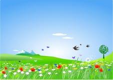 Countryside springlike Stock Photos