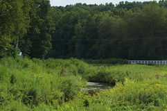Countryside Stream and Meadows Royalty Free Stock Photo