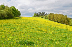 Countryside in Sumava mountains Royalty Free Stock Photos