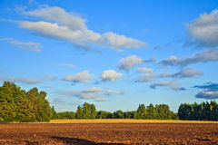 Countryside at summer Royalty Free Stock Images
