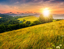 Countryside summer landscape with field, forest and mountain rid. Agricultural hay field in mountains. trees on the grassy meadow. beautiful countryside Royalty Free Stock Photos