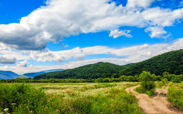 Countryside summer landscape with field, forest and mountain rid Stock Photography