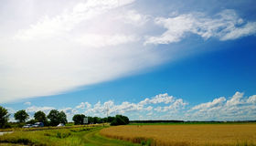 Countryside summer landscape Stock Photography