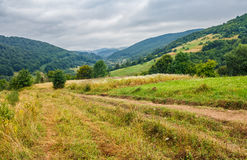 Countryside Summer Landscape With Field, Forest And Mountain Rid Royalty Free Stock Photos