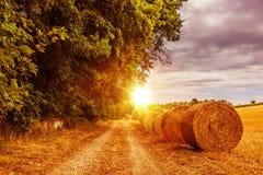 Countryside Summer Road Stock Photos