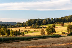 Countryside Summer Sunset Landscape Royalty Free Stock Photography
