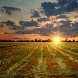 Countryside sunset on the field Stock Image