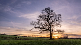 Countryside sunset in winter. Beautiful peaceful sunset in the Cumbrian countryside in winter time Royalty Free Stock Image