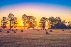 Sunset field Stock Photography