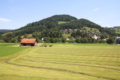 Countryside in Switzerland Royalty Free Stock Photo