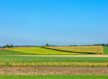 Countryside in Switzerland Royalty Free Stock Images