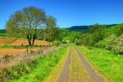 Countryside Trail. A trail making its way through the English countryside with a beautiful blue sky Stock Photo
