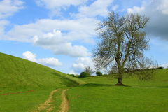 Countryside Trail, The Cotswolds, England. A winding trail through beautiful English countryside in the Cotswolds Royalty Free Stock Image